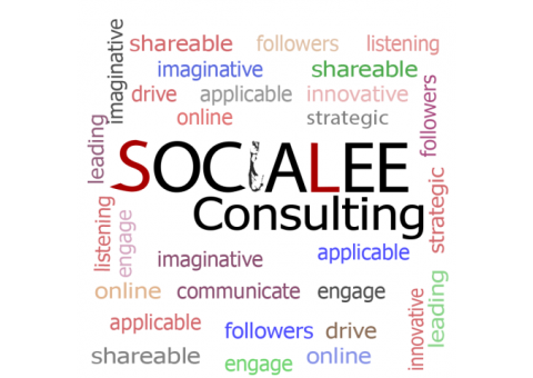 SociaLEE Consulting